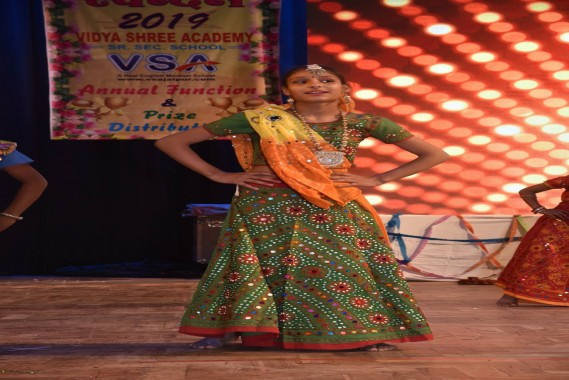 VSA Annual Function Pics